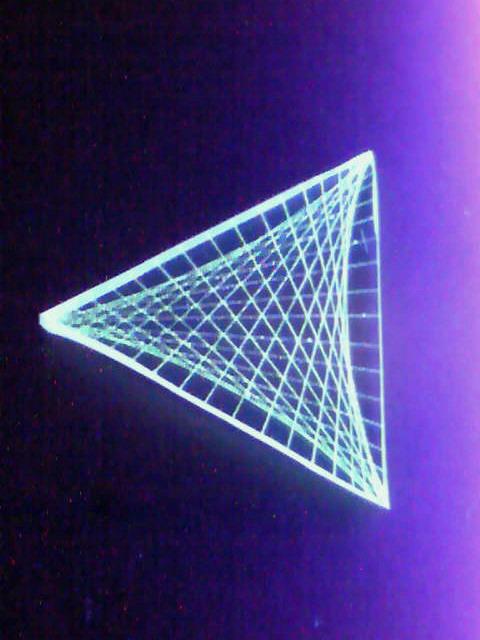 蛍小三角星、角板式
